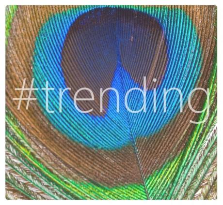 #trending: 2014 Color Trends